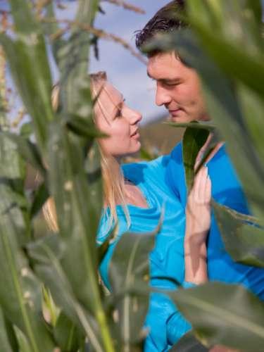 1. Plantação de milho Algumas pessoas entrevistadas relataram que o lugar mais louco que já fizeram sexo foi um campo de plantação de milho. Obviamente, estas pessoas não tiveram como inspiração o filme de terror Colheta Maldita, de 1984