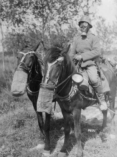 1918: até os cavalos das tropas alemãs tiveram de ser protegidas dos gases com máscaras.