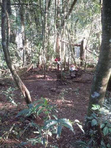 Uma das testemunhas disseque é muito difícil cavar onde o corpo foi encontrado