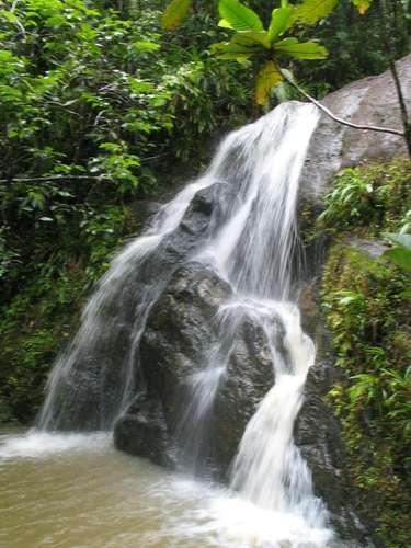 Floresta de Colo-i-Suva, Suva, Fiji Situada na costa sudeste da ilha de Viti Levu, Suva tem cerca de 168 mil habitantes, e éa capital da República de Fiji desde 1877. A 20 minutos do centro da cidade, a floresta de Colo-i-Suva é um lugar ideal para conhecer a rica natureza de Fiji, em trilhas e piqueniques em meio a uma densa vegetação e belas cachoeiras