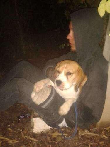 18 de outubro -O instituto é acusado de maltratar animais para pesquisas tecnológicas