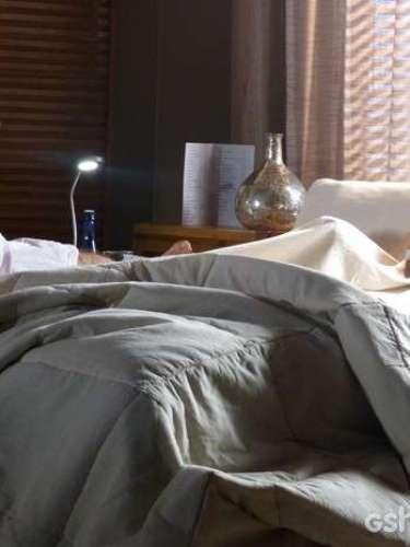 Após seduzir Virgílio (Humberto Martins) ao surgir só de lingerie, Helena (Julia Lemmertz) acorda sem se lembrara de nada