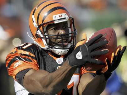 Terrel Owens last played in the NFL with the Cincinatti Bengals.  Foto: Ed Reinke, File / AP