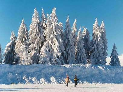 Floresta Negra, Alemanha Foto: DZT
