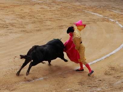Las organizaciones defensoras de los animales en Colombia buscan que las leyes nacionales prohíban las corridas de toros, las corralejas, las peleas de gallos y cualquier otra forma de maltrato animal. Foto: Shutterstock