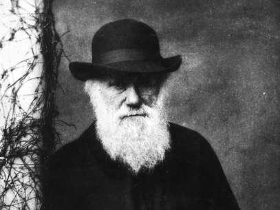O cientista britânico foi responsável pela formulação da teoria da evolução das espécies Fot Getty Images
