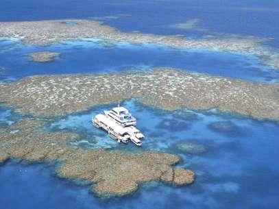 A Grande Barreira de Corais perdeu mais da metade dos corais nas últimas três décadas Foto: Getty Images