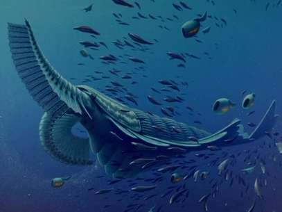 Fósseis revelam espécie próxima à baleia de 520 mi de anos