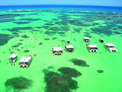 As piscinas naturais de Maragogi são conhecidas pela beleza de suas águas rasas e transparentes e suas formações coralinas Foto: Visit Brasil