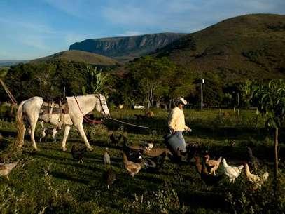 """Fotos retratam todo o """"caminho"""" do queijo, desde a criação da vaca até a comercialização Foto: João Correia Filho / Divulgação"""