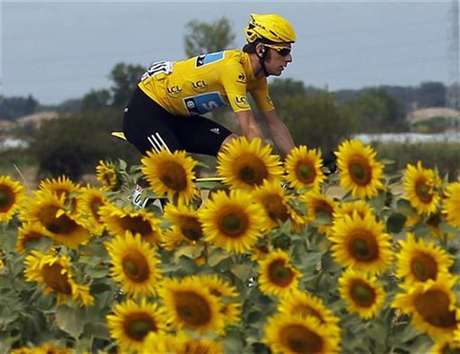 Sky Procycling rider and leader's yellow jersey Bradley Wiggins of Britain cycles past sunflowers during the 18th stage of the 99th Tour de France cycling race between Blagnac and Brive-La-Gaillarde, July 20, 2012.