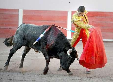 <p>El novillero aguascalentense Ricardo Frausto encabeza el cartel que lidiara toros de Vallencinos.</p>