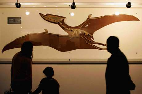 O Museu Geológico da China fica em Pequim Foto: Getty Images