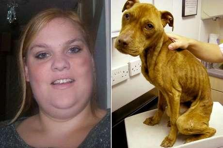 Cães estavam em péssimas condições e um deles morreu logo depois do resgate Foto: The Mirror / Reprodução