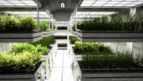 Projeto de estufa para plantas terrestres em Marte causa controvérsia entre cientistas Foto: Bryan Versteeg / Mars One