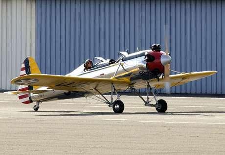 Harrison Ford é amante de aviação e já foi fotografado várias vezes em aeronaves antigas Foto: The Grosby Group
