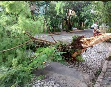 Registro dos estragos provocados por forte temporal que atingiu Porto Alegre. Imagem do bairro Rio Branco