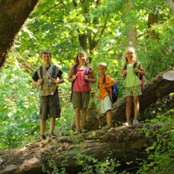 campamentos verano infantiles: