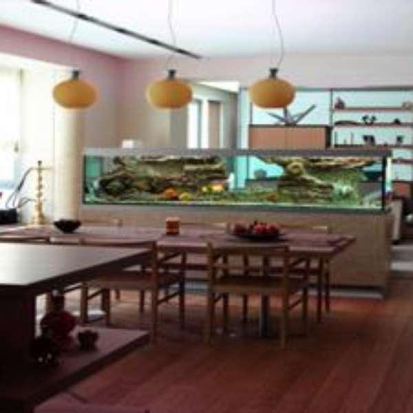 Acuarios para decorar tu casa seg n el feng shui for Decorar la casa segun el feng shui