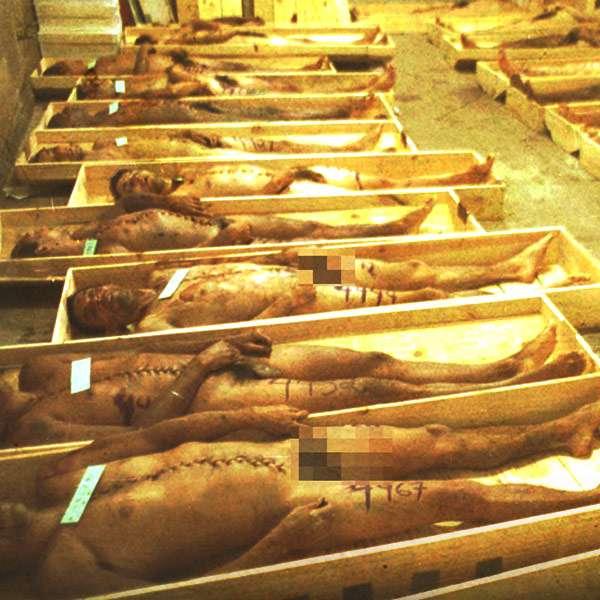 massacre-carandiru-facebook-info.jpg