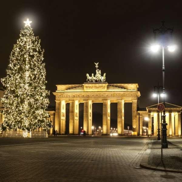Navidad los rboles de navidad m s bonitos del mundo en - Arboles de navidad bonitos ...