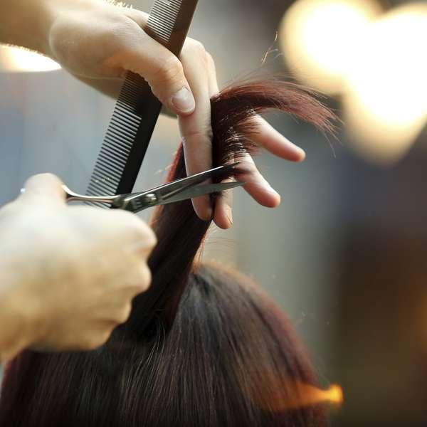 Por qu hoy 25 de agosto se celebra el d a del peluquero for Noticias del espectaculo del dia de hoy argentina