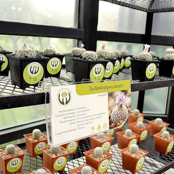 Adopta una planta en el jard n bot nico y cambia la for Jardin botanico unam 2015