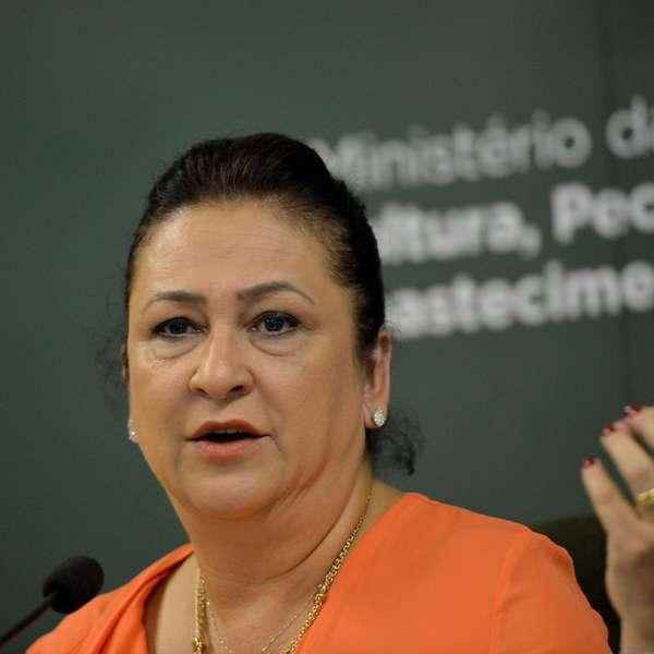 Ministros do PMDB seguirão no governo, diz Kátia Abreu