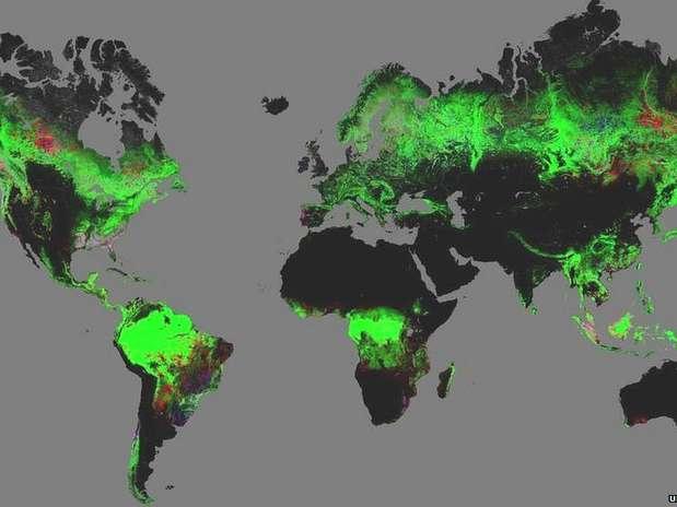 Estudo na revista Science foi feito a partir de dados gerados por nova ferramenta Foto: BBCBrasil.com
