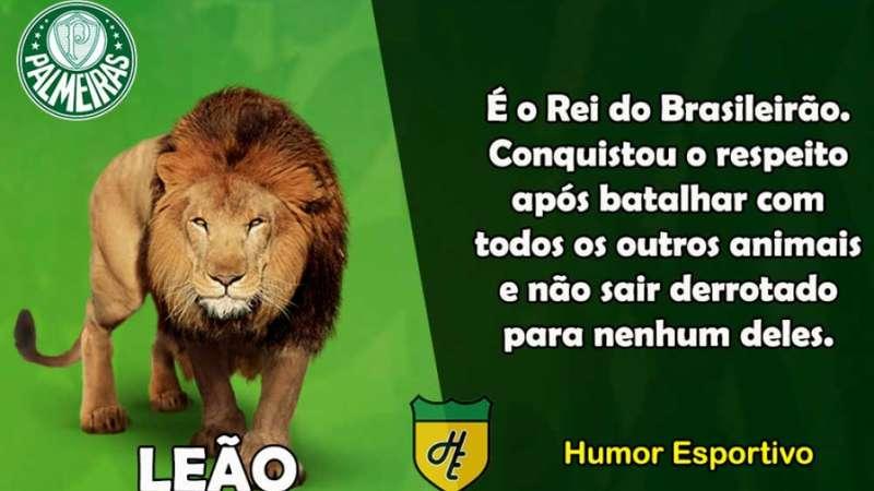 Qual animal representaria cada clube do Brasileirão  Confira! f87085bf78106