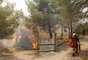 El fuego ha arrasado miles de hectáreas y ha obligado a desalojar a centenares de personas.