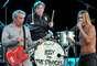 Iggy and the Stooges, se robaron la atención en 2003. Iggy Pop se reunió con sus compañeros casi treinta años después de su separación. En este año la agrupación también tiene nuevas sorpresas, su regreso será con el disco, 'Ready to Die'.