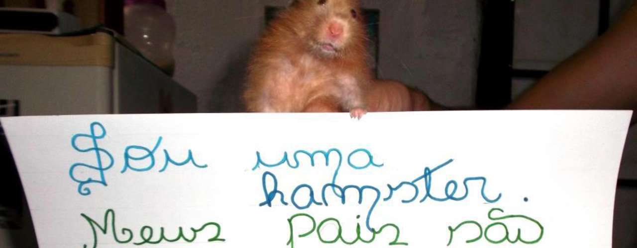 Um hamster também posou parafoto de protesto contra Marco Feliciano