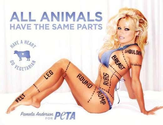 """Pamela Anderson realiza una sexy pose bajo la campaña: """"Todos los animales tenemos las mismas partes""""."""