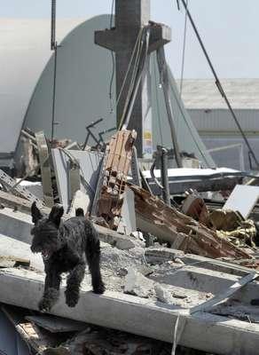 Al menos quince personas han muerto y algunas continúan desaparecidas tras los tres terremotos de magnitud 5,8, 5,3 y 5,1 grados en la escala Richter que sacudieron este martes la región de Emilia Romagna (norte de Italia) y que causaron el derrumbe de varios edificios y naves industriales.