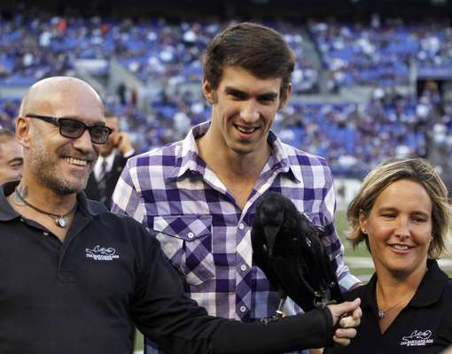 U.S. Olympic swimmer and Baltimore native Michael Phelps (C) has his picture taken with a raven prior to the Cincinnati Bengals versus Baltimore Ravens NFL football game in Baltimore September 10, 2012.