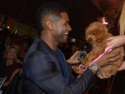 Usher was honored for charitable work at the second annual Pencils of Promise Gala in New York City last night but today we're honoring him for cranking up adorableness to 11 for taking pictures at the event with a puppy.
