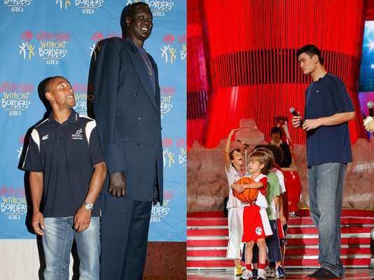 En la NBA se juega el mejor basquetbol del mundo, y por la Liga han desfilado gran cantidad de jugadores extranjeros que han impactado al menos en principio por su estatura, siendo unos auténticos monstruos de más de 2, 31 metros. A continuación una lista con los jugadores de una altura superior a 2, 21 metros.