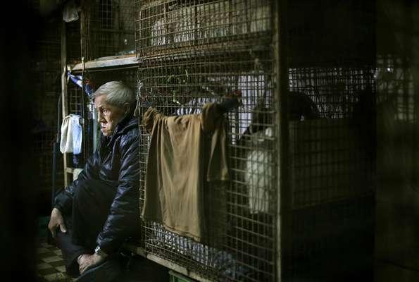"""Para muchos de los habitantes ricos de Hong Kong, una de las ciudades más opulentas de Asia, hogar es sinónimo de una mansión con una amplia vista desde las alturas de Victoria Peak. Para los más pobres, como Leung Cho-yin, """"hogar"""" es una jaula de metal. Este ex carnicero de 67 años paga mensualmente unos 167 dólares por una de las jaulas de alambre tejido parecidas a conejeras que se amontonan en un ruinoso departamento del barrio obrero de West Kowloon."""