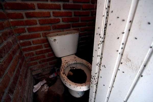 La Fiscalía General del Estado de Jalisco precisó que las víctimas -191 hombres, 45 mujeres y 39 menores de edad, pertenecientes a 42 familias- vivían dentro de la fábrica en condiciones infrahumanas.