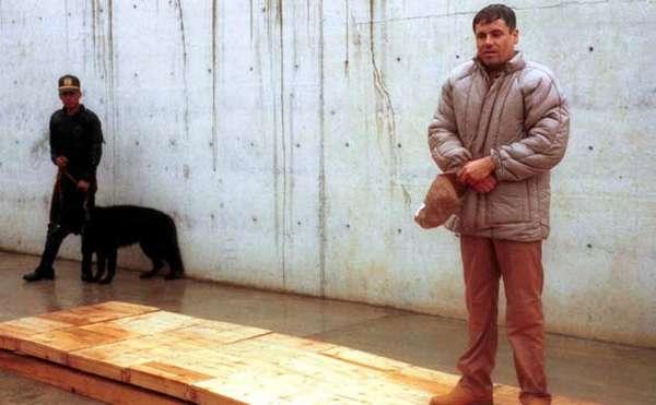 """Guzmán Loera tiene una estatura de un metro con 55 centímetros y de ahí viene su apodo, ya que en la región de donde es oriundo, a las personas de baja estatura se les conoce como """"Chapos"""" o """"Chapitos""""."""