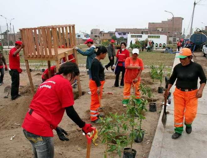 Sembraron más de 62 mil árboles ahorradores de agua en Lima