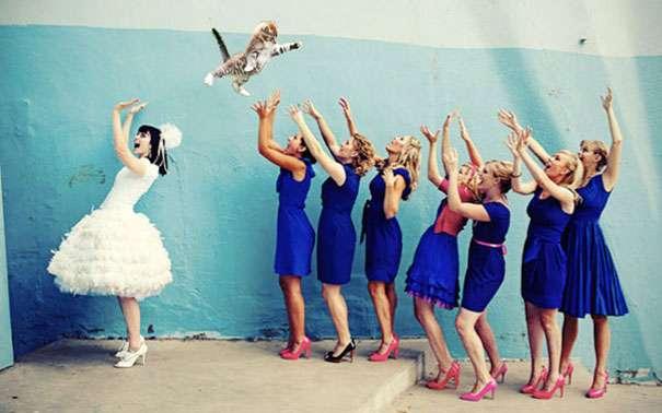 bridesthrowingcats.com