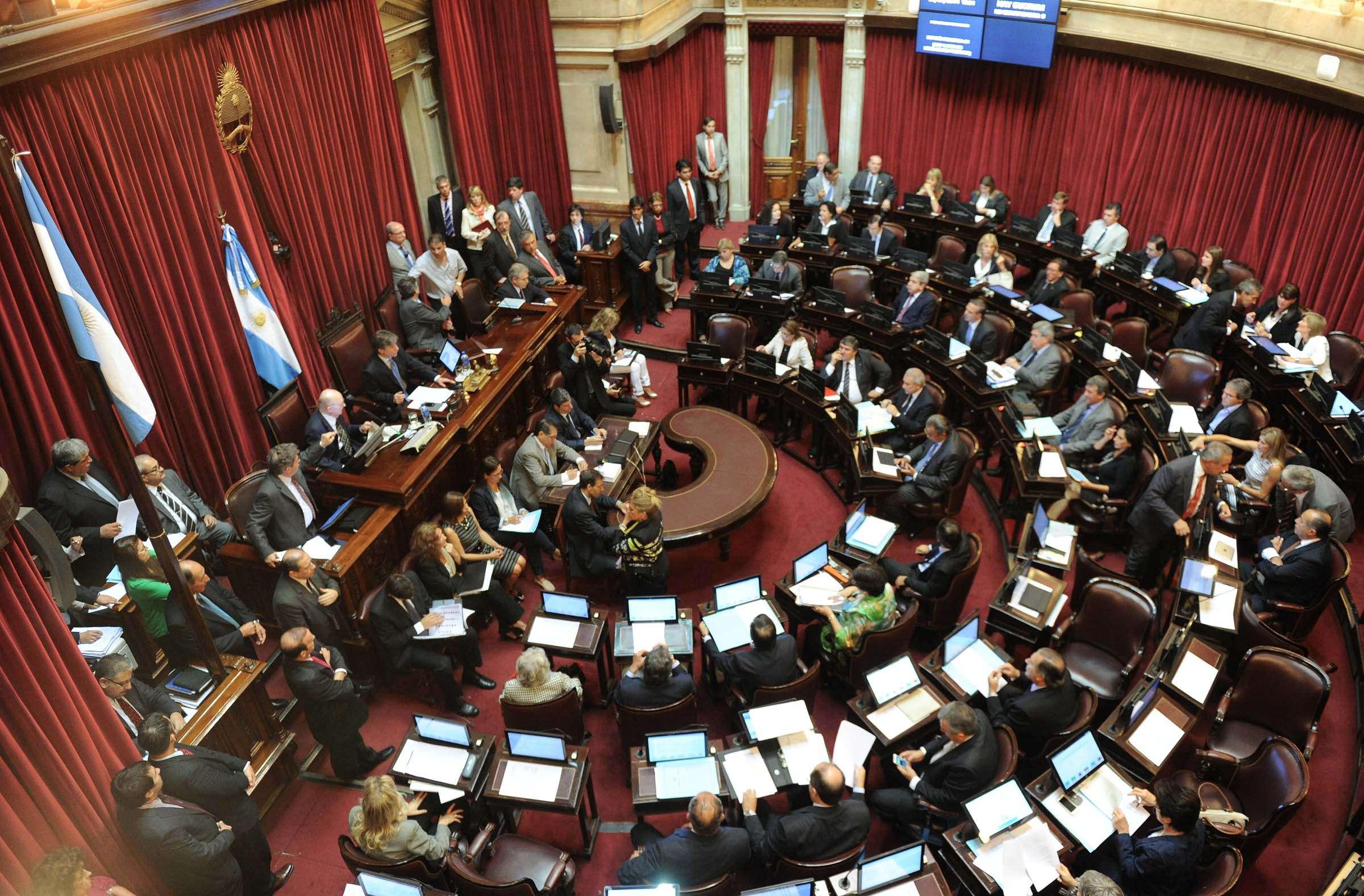 Arranca en el Senado el debate por la reforma del Código Penal Foto: Télam