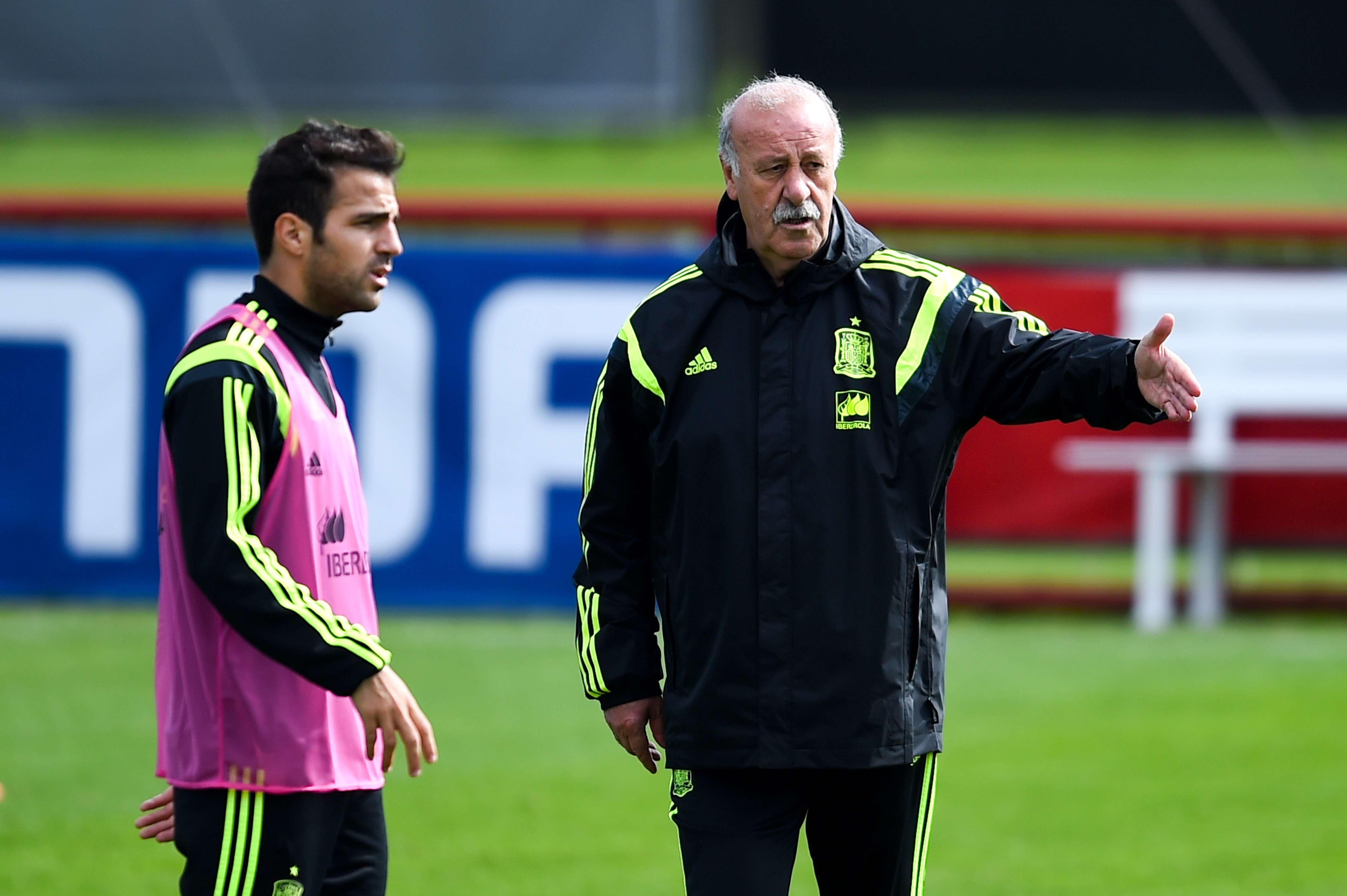 Del Bosque recrimina a Fábregas durante el entrenamiento de España Foto: Getty Images