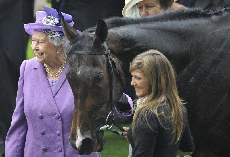 Queen's horse Estimate tests positive for morphine