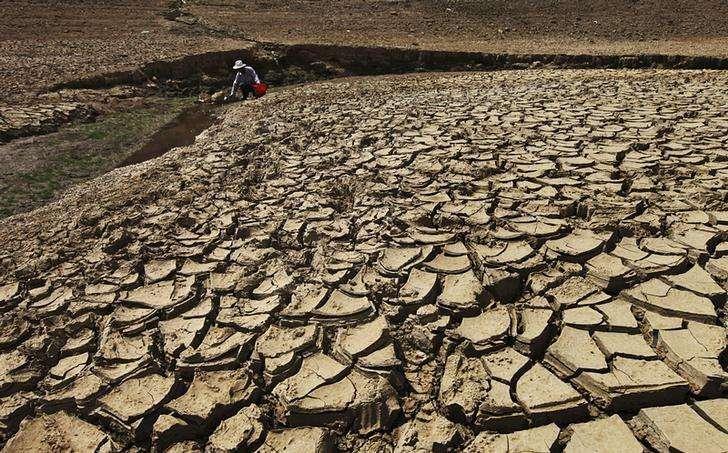 Imagen de archivo de un hombre recolectando agua de una reserva parcialmente seca en Taizhou, China, ago 17 2013. Una aguda sequía y elevadas temperaturas han dañado más de un millón de hectáreas de tierra agrícola en las provincias chinas de Henan y Mongolia Interior y no se prevé un alivio inmediato, informó el lunes la agencia oficial de noticias Xinhua. Foto: Stringer/Reuters
