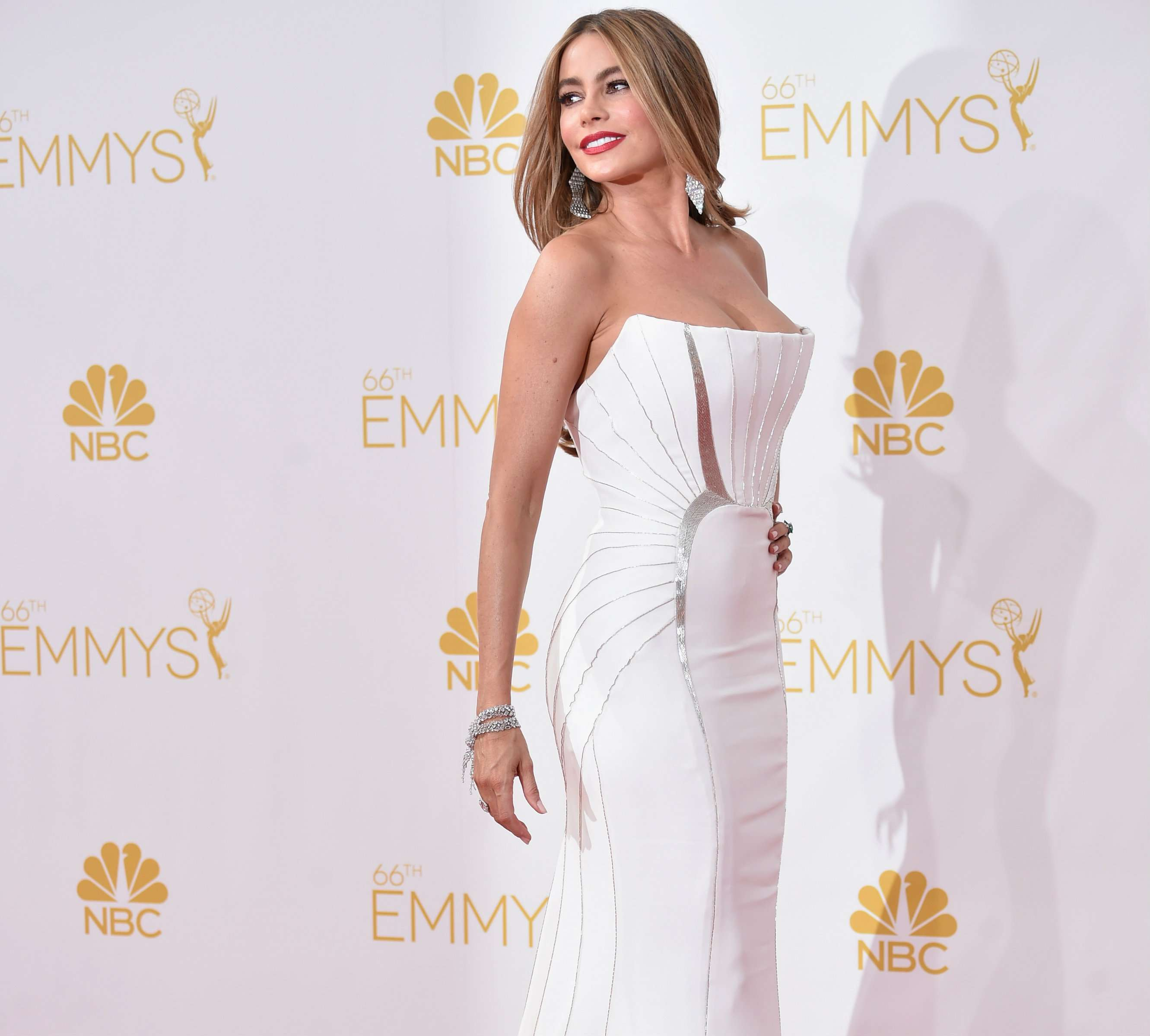 Sofia Vergara llega sin Joe Manganiello a los Emmy Awards 2014 Foto: Getty