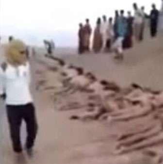 Los yihadistas del Estado Islámico (EI) ejecutaron a 160 soldados en el norte de Siria, país en guerra donde un grupo armado tenía secuestrados el jueves a 43 Cascos Azules en el Golán, mientras el presidente estadounidense Barack Obama dice no tener aún una estrategia decidida.