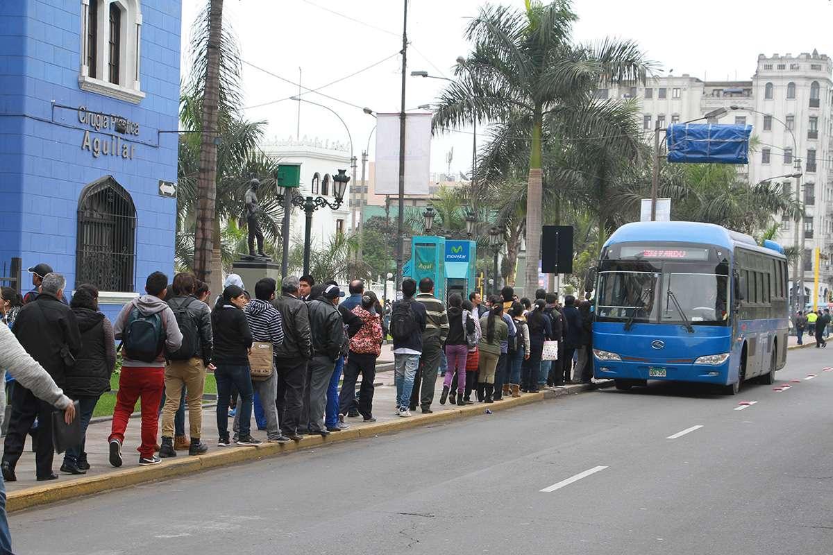 Foto: Miguel Bustamante/Terra Perú